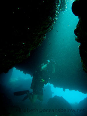 Professional Underwater Videographer, Jan